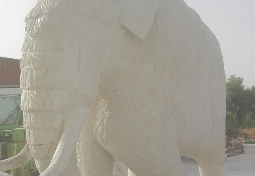 mamut en blanco