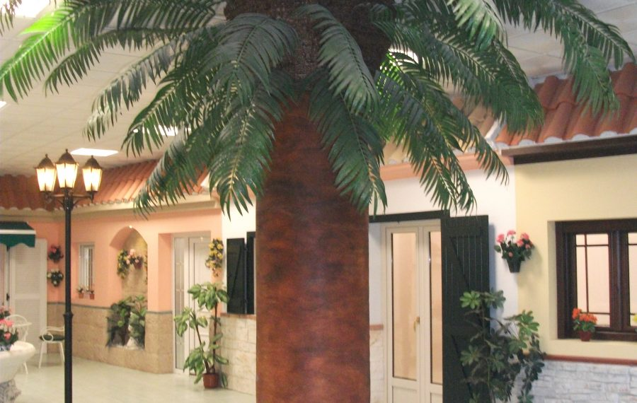 ventalucia palmera